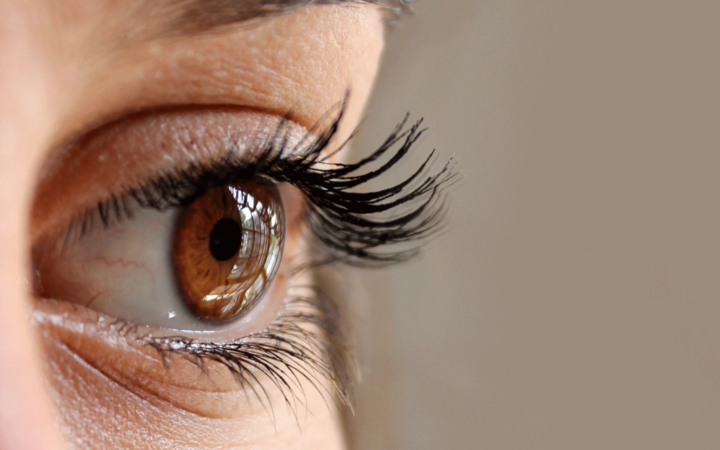 The importance of visual health